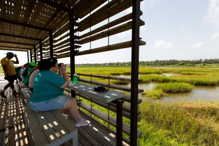 Campers observing the wetlands near Copano Bay, Tx.
